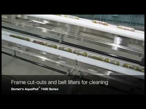 Packaged Food Sortation Conveyor System