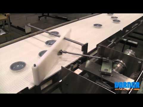 Pie Separator AquaPruf Conveyor
